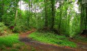Randonnée Marche SAINT-JEAN-AUX-BOIS - en forêt de Compiègne_6_les Grands Monts_la route tournante sur la tête St-Jean - Photo 22