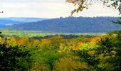 Randonnée Marche SAINT-JEAN-AUX-BOIS - en forêt de Compiègne_6_les Grands Monts_la route tournante sur la tête St-Jean - Photo 184
