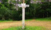 Randonnée Marche SAINT-JEAN-AUX-BOIS - en forêt de Compiègne_6_les Grands Monts_la route tournante sur la tête St-Jean - Photo 168