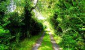 Randonnée Marche SAINT-JEAN-AUX-BOIS - en forêt de Compiègne_6_les Grands Monts_la route tournante sur la tête St-Jean - Photo 157