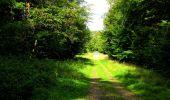 Randonnée Marche SAINT-JEAN-AUX-BOIS - en forêt de Compiègne_6_les Grands Monts_la route tournante sur la tête St-Jean - Photo 109