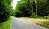 Randonnée Marche SAINT-JEAN-AUX-BOIS - en forêt de Compiègne_6_les Grands Monts_la route tournante sur la tête St-Jean - Photo 115
