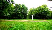 Randonnée Marche SAINT-JEAN-AUX-BOIS - en forêt de Compiègne_6_les Grands Monts_la route tournante sur la tête St-Jean - Photo 37