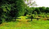 Randonnée Marche SAINT-JEAN-AUX-BOIS - en forêt de Compiègne_6_les Grands Monts_la route tournante sur la tête St-Jean - Photo 85