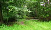 Randonnée Marche SAINT-JEAN-AUX-BOIS - en forêt de Compiègne_6_les Grands Monts_la route tournante sur la tête St-Jean - Photo 27
