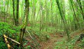 Randonnée Marche SAINT-JEAN-AUX-BOIS - en forêt de Compiègne_6_les Grands Monts_la route tournante sur la tête St-Jean - Photo 51