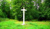 Randonnée Marche SAINT-JEAN-AUX-BOIS - en forêt de Compiègne_6_les Grands Monts_la route tournante sur la tête St-Jean - Photo 63
