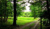 Randonnée Marche SAINT-JEAN-AUX-BOIS - en forêt de Compiègne_6_les Grands Monts_la route tournante sur la tête St-Jean - Photo 120