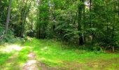 Randonnée Marche SAINT-JEAN-AUX-BOIS - en forêt de Compiègne_6_les Grands Monts_la route tournante sur la tête St-Jean - Photo 107