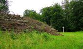 Randonnée Marche SAINT-JEAN-AUX-BOIS - en forêt de Compiègne_6_les Grands Monts_la route tournante sur la tête St-Jean - Photo 59