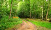 Randonnée Marche SAINT-JEAN-AUX-BOIS - en forêt de Compiègne_6_les Grands Monts_la route tournante sur la tête St-Jean - Photo 119