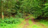 Randonnée Marche SAINT-JEAN-AUX-BOIS - en forêt de Compiègne_6_les Grands Monts_la route tournante sur la tête St-Jean - Photo 171