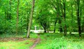 Randonnée Marche SAINT-JEAN-AUX-BOIS - en forêt de Compiègne_6_les Grands Monts_la route tournante sur la tête St-Jean - Photo 31