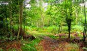 Randonnée Marche SAINT-JEAN-AUX-BOIS - en forêt de Compiègne_6_les Grands Monts_la route tournante sur la tête St-Jean - Photo 6