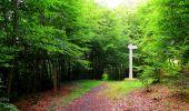 Randonnée Marche SAINT-JEAN-AUX-BOIS - en forêt de Compiègne_6_les Grands Monts_la route tournante sur la tête St-Jean - Photo 172