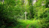 Randonnée Marche SAINT-JEAN-AUX-BOIS - en forêt de Compiègne_6_les Grands Monts_la route tournante sur la tête St-Jean - Photo 148