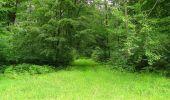 Randonnée Marche SAINT-JEAN-AUX-BOIS - en forêt de Compiègne_6_les Grands Monts_la route tournante sur la tête St-Jean - Photo 60