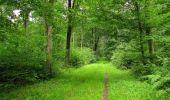 Randonnée Marche SAINT-JEAN-AUX-BOIS - en forêt de Compiègne_6_les Grands Monts_la route tournante sur la tête St-Jean - Photo 62
