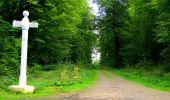 Randonnée Marche SAINT-JEAN-AUX-BOIS - en forêt de Compiègne_6_les Grands Monts_la route tournante sur la tête St-Jean - Photo 99