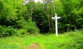 Randonnée Marche SAINT-JEAN-AUX-BOIS - en forêt de Compiègne_6_les Grands Monts_la route tournante sur la tête St-Jean - Photo 151