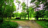Randonnée Marche SAINT-JEAN-AUX-BOIS - en forêt de Compiègne_6_les Grands Monts_la route tournante sur la tête St-Jean - Photo 118