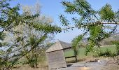 Trail Equestrian Tenneville - Chaussée Marie-Thérèse - Photo 44