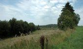 Trail Equestrian Tenneville - Chaussée Marie-Thérèse - Photo 62