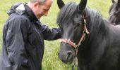 Trail Equestrian Tenneville - Chaussée Marie-Thérèse - Photo 27