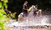 Trail Equestrian Tenneville - Chaussée Marie-Thérèse - Photo 77