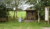 Trail Equestrian Tenneville - Chaussée Marie-Thérèse - Photo 73