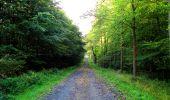 Randonnée Marche LONGPONT - en forêt de Retz_57_Longpont_Saint-Pierre Aigle_AR - Photo 17