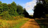 Randonnée Marche LONGPONT - en forêt de Retz_57_Longpont_Saint-Pierre Aigle_AR - Photo 28