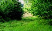 Randonnée Marche LONGPONT - en forêt de Retz_57_Longpont_Saint-Pierre Aigle_AR - Photo 7