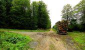 Randonnée Marche LONGPONT - en forêt de Retz_57_Longpont_Saint-Pierre Aigle_AR - Photo 59