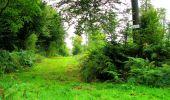 Randonnée Marche LONGPONT - en forêt de Retz_57_Longpont_Saint-Pierre Aigle_AR - Photo 65