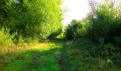 Randonnée Marche LONGPONT - en forêt de Retz_57_Longpont_Saint-Pierre Aigle_AR - Photo 29