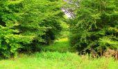 Randonnée Marche LONGPONT - en forêt de Retz_57_Longpont_Saint-Pierre Aigle_AR - Photo 75
