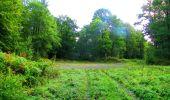 Randonnée Marche LONGPONT - en forêt de Retz_57_Longpont_Saint-Pierre Aigle_AR - Photo 36