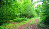 Randonnée Marche LONGPONT - en forêt de Retz_57_Longpont_Saint-Pierre Aigle_AR - Photo 32
