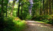 Randonnée Marche LONGPONT - en forêt de Retz_57_Longpont_Saint-Pierre Aigle_AR - Photo 104