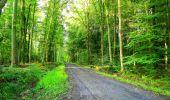 Randonnée Marche LONGPONT - en forêt de Retz_57_Longpont_Saint-Pierre Aigle_AR - Photo 15