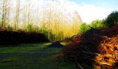 Randonnée Marche LONGPONT - en forêt de Retz_57_Longpont_Saint-Pierre Aigle_AR - Photo 21