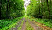 Randonnée Marche LONGPONT - en forêt de Retz_57_Longpont_Saint-Pierre Aigle_AR - Photo 57