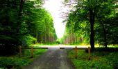 Randonnée Marche LONGPONT - en forêt de Retz_57_Longpont_Saint-Pierre Aigle_AR - Photo 76