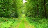 Randonnée Marche LONGPONT - en forêt de Retz_57_Longpont_Saint-Pierre Aigle_AR - Photo 58