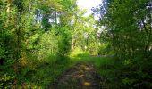 Randonnée Marche LONGPONT - en forêt de Retz_57_Longpont_Saint-Pierre Aigle_AR - Photo 46