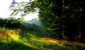 Randonnée Marche LONGPONT - en forêt de Retz_57_Longpont_Saint-Pierre Aigle_AR - Photo 3