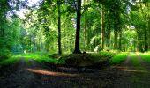 Randonnée Marche LONGPONT - en forêt de Retz_57_Longpont_Saint-Pierre Aigle_AR - Photo 92