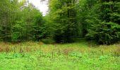Randonnée Marche LONGPONT - en forêt de Retz_57_Longpont_Saint-Pierre Aigle_AR - Photo 60
