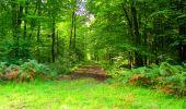Randonnée Marche LONGPONT - en forêt de Retz_57_Longpont_Saint-Pierre Aigle_AR - Photo 101
